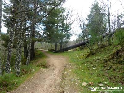 Cascadas Purgatorio,Bosque Finlandia; grupo de senderismo; grupos de montaña madrid